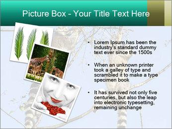 0000084352 PowerPoint Template - Slide 17