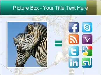 0000084352 PowerPoint Template - Slide 21