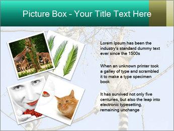 0000084352 PowerPoint Template - Slide 23