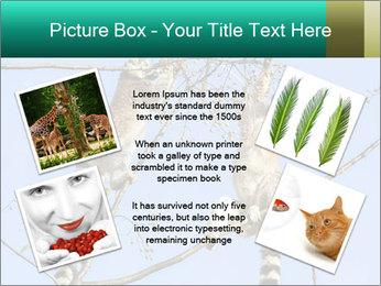 0000084352 PowerPoint Template - Slide 24