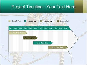 0000084352 PowerPoint Templates - Slide 25