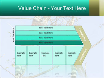 0000084352 PowerPoint Templates - Slide 27