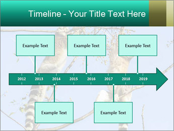 0000084352 PowerPoint Template - Slide 28