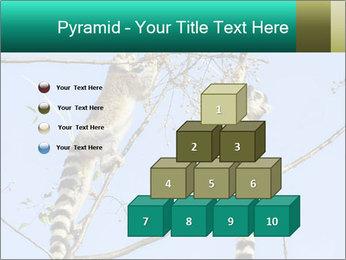 0000084352 PowerPoint Template - Slide 31