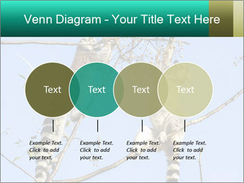 0000084352 PowerPoint Templates - Slide 32