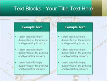 0000084352 PowerPoint Templates - Slide 57