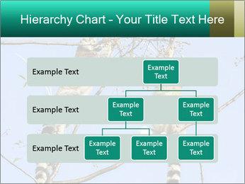 0000084352 PowerPoint Template - Slide 67