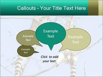 0000084352 PowerPoint Template - Slide 73