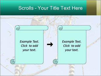 0000084352 PowerPoint Template - Slide 74