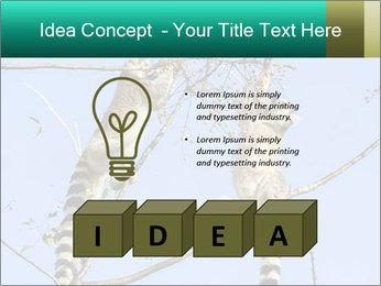 0000084352 PowerPoint Template - Slide 80