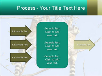 0000084352 PowerPoint Template - Slide 85