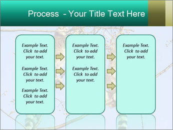 0000084352 PowerPoint Template - Slide 86