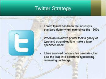 0000084352 PowerPoint Template - Slide 9
