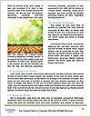 0000084358 Word Templates - Page 4
