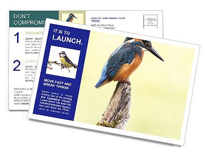 0000084360 Postcard Template