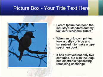 0000084360 PowerPoint Template - Slide 13