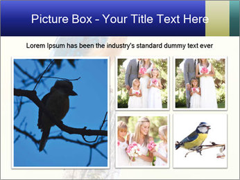 0000084360 PowerPoint Template - Slide 19
