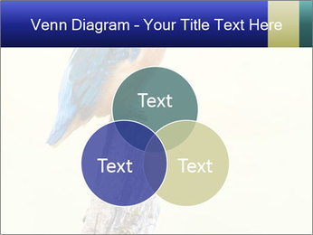 0000084360 PowerPoint Template - Slide 33