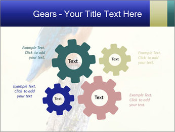 0000084360 PowerPoint Templates - Slide 47