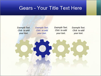 0000084360 PowerPoint Template - Slide 48