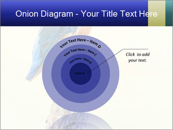 0000084360 PowerPoint Template - Slide 61