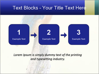 0000084360 PowerPoint Template - Slide 71