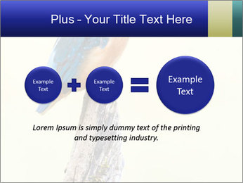 0000084360 PowerPoint Templates - Slide 75