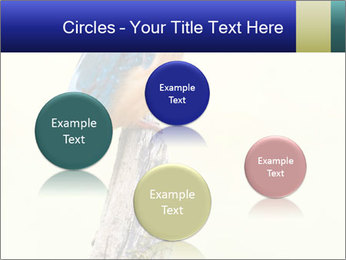 0000084360 PowerPoint Template - Slide 77