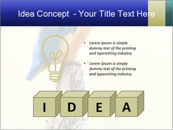 0000084360 PowerPoint Template - Slide 80