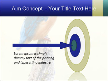 0000084360 PowerPoint Template - Slide 83