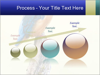 0000084360 PowerPoint Template - Slide 87