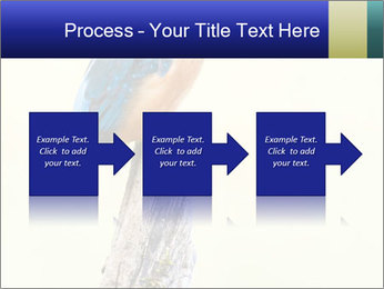 0000084360 PowerPoint Template - Slide 88