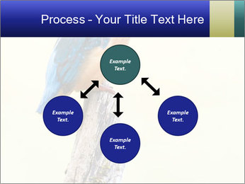 0000084360 PowerPoint Template - Slide 91