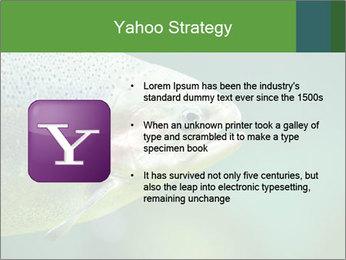 0000084361 PowerPoint Template - Slide 11
