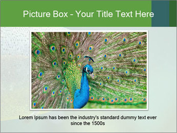0000084361 PowerPoint Template - Slide 15