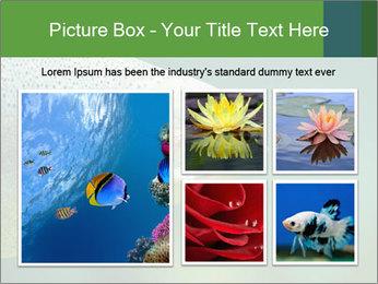 0000084361 PowerPoint Template - Slide 19