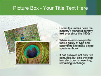 0000084361 PowerPoint Template - Slide 20