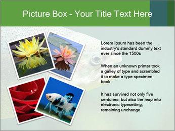 0000084361 PowerPoint Template - Slide 23