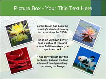 0000084361 PowerPoint Template - Slide 24