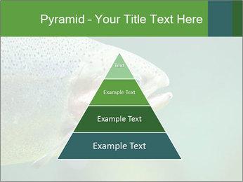 0000084361 PowerPoint Template - Slide 30