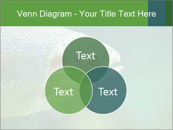 0000084361 PowerPoint Template - Slide 33