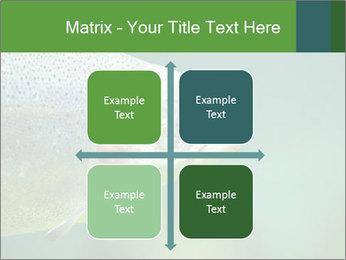 0000084361 PowerPoint Template - Slide 37