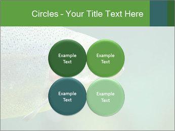 0000084361 PowerPoint Template - Slide 38