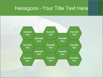 0000084361 PowerPoint Template - Slide 44