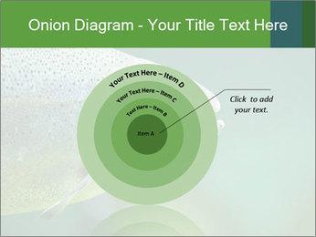 0000084361 PowerPoint Template - Slide 61