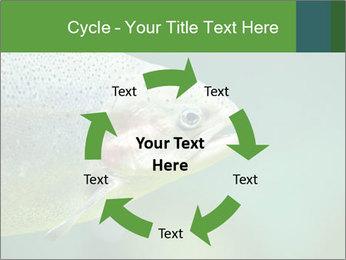 0000084361 PowerPoint Template - Slide 62