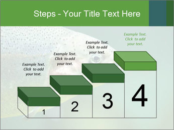 0000084361 PowerPoint Template - Slide 64