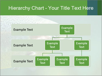 0000084361 PowerPoint Template - Slide 67