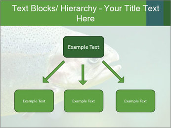0000084361 PowerPoint Template - Slide 69
