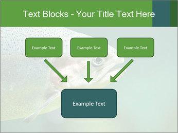 0000084361 PowerPoint Template - Slide 70